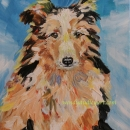 Ol Faithful. Sheltie. Original 8 x 10 $225