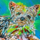 Yorkshire Terrier 8x10ins Sold