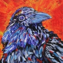 Eye Of The Raven 8x10ins-Sold